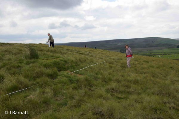 Rob and Boo Vernon with the Fluxgate Gradiometer. Lodge Moor Bole site, July 2016.