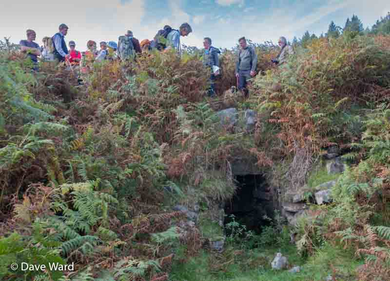 The lime kiln hidden in the bracken