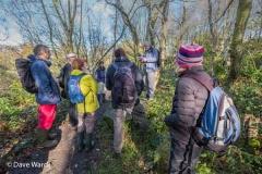 Walkers in New Park Quarry, Stanton Moor