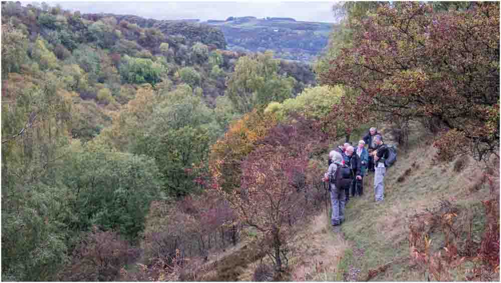 Autumn colours in Coombs Dale above Sallet Hole Mine. Photo © Dave Ward