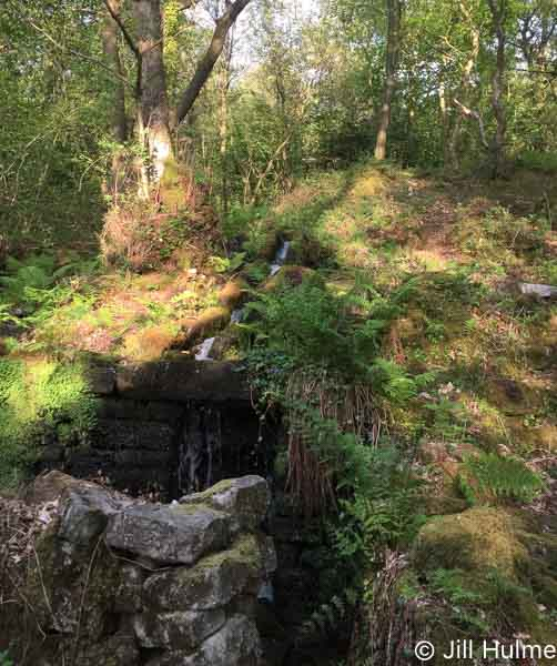 Froggatt Wood smelt mill © Jill Hulme